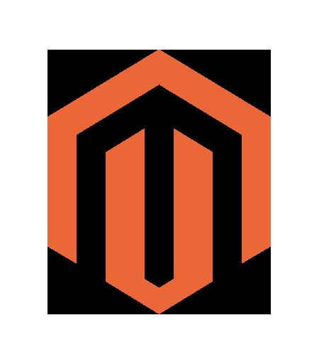 Minneapolis Magento Developers